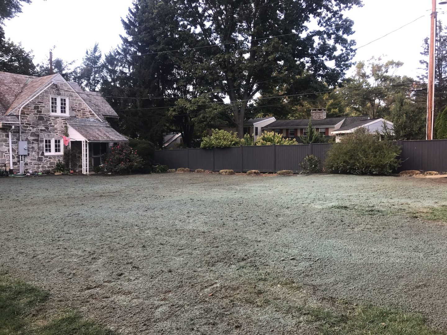 beautiful lawn care services near me